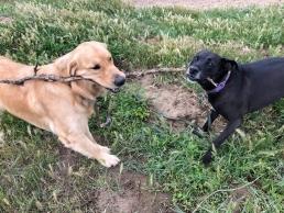 Moose and Keisha