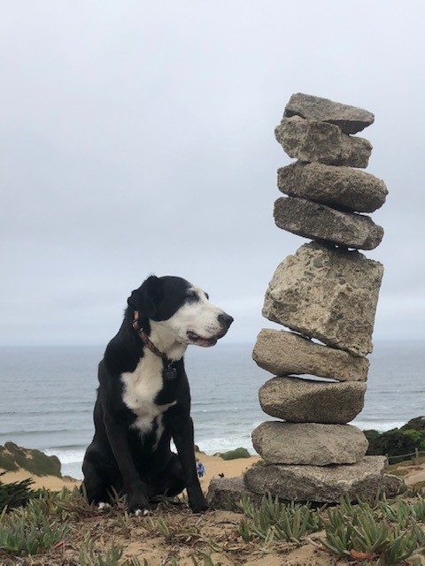 Remy at Funston